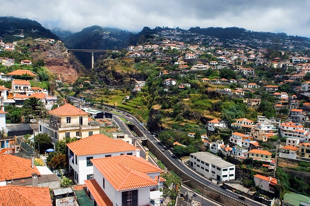 Removals to Portugal – Funchal